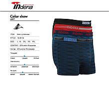 Мужские стрейчевые боксеры «INDENA»  АРТ.95134, фото 2