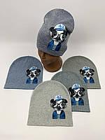 Детские демисезонные вязаные шапки для мальчиков оптом, р.50-52, ANPA (m100), фото 1
