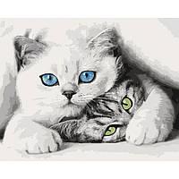 Картина по номерам Кошечки ТМ Идейка 40 х 50 см КНО4098, фото 1
