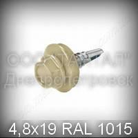Саморез 4,8х19 RAL 1015 DIN 7504K шуруп для профнастила с шестигранной головкой окрашенный цвет слоновая кость