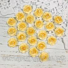 Роза крем распродажа
