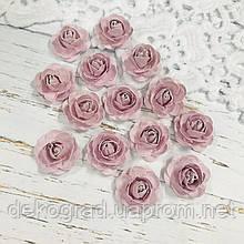 Роза лиловая распродажа