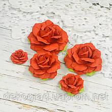 Набор роза красная