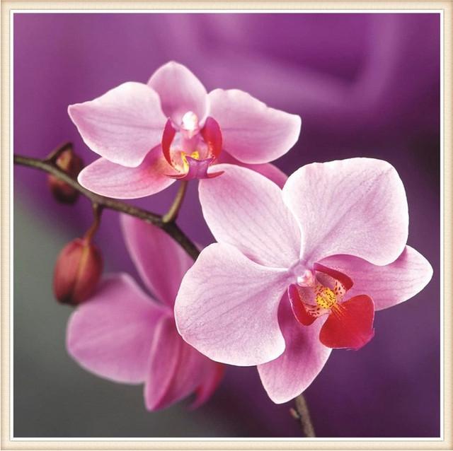 Алмазная живопись - цветы, цветы в вазе и натюрморты