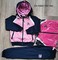 Спортивный трикотажный костюм  для девочек 116/146 см