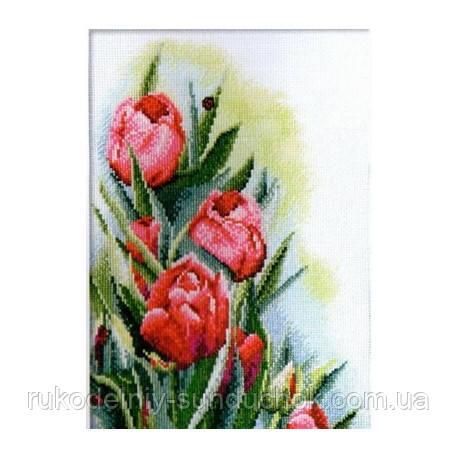 Набір для вишивання хрестом ТМ Мар'я Майстриня 04.006.06 Тюльпани