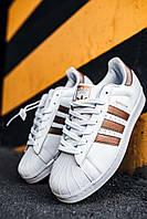 Кроссовки мужские весенние осенние качественные модные Adidas Superstar White/Gold