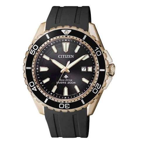 Часы Citizen BN0193-17E