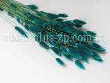 Лагурус - сухоцвет цветной, (упаковка - 10 веточек)