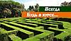 В одном из парков Киева создадут зеленые лабиринты