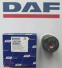 Втулка, cайлентблок рессоры DAF 105, XF 95, CF 75, 85 , 65, Евро 5 4 3 оригинал Даф 24*63*86 грузовик/тягач, фото 2