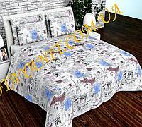 Набор  постельного белья №с236 Евростандарт, фото 1