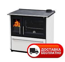 Отопительная варочная печь на дровах Plamen 850 GLAS