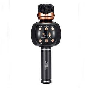 Беспроводной микрофон для караоке Wster 2911 Черный, фото 2