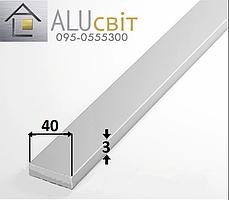Полоса (шина) алюминиевая 40х3 анодированная серебро