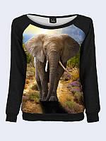 Світшот жіночий Слон