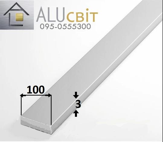 Полоса (шина) алюминиевая 100х3  без покрытия, фото 2