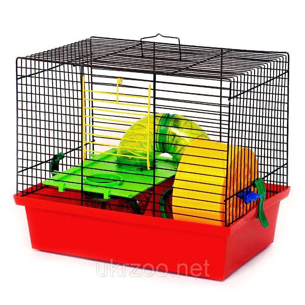 Клетка 33х23х29 см Микки люкс краска для джунгарика, хомяка, грызуна