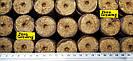 Таблетки кокосовые для проращивания Ellegaard 36мм - Дания, фото 2