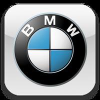 Чехлы для BMW (БМВ)