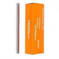 Скобы для подвязочного степлера Topetool (10000 шт.)