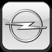 Чехлы для Opel (Опель)