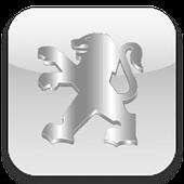 Чехлы для Peugeot (Пежо)