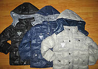 Куртка на синтепоне на мальчиков /димисезон/ Nature  2-4-6 лет