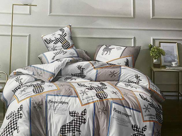 Двуспальный комплект постельного белья евро 200*220 хлопок  (13916) TM KRISPOL Украина, фото 2