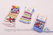 Носки для мальчика антибактериальные всесезонные KBS (0) размер 12-14 3-10229