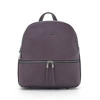 Рюкзак ASH2088 red