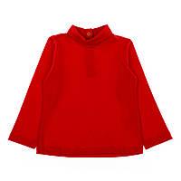 Комплект BluKids Dress and Golf, р. 80 5476149 ТМ: BluKids