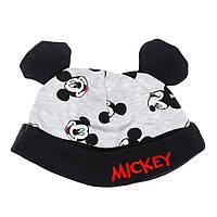 Комплект BluKids Gray Mickey Mouse, р. 56 5490507 ТМ: BluKids