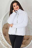 М555 Двусторонняя короткая куртка больших размеров весна-осень, 2в1 белый/якоря,