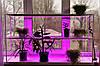 Подставка для цветов Стеллаж оконный-6 с фито-лампами