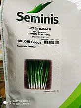 Семена лука на перо Грин Баннер сорт  суперранний 100 семян Seminis Голландия для суперранней продукции