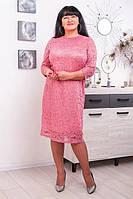 Платье из гипюра Дора (50-62) розовый