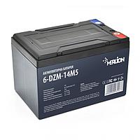 Тяговая аккумуляторная батарея AGM Merlion 6-DZM-14 12V 14Ah M5