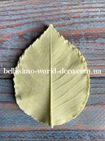 Молд лист Розы реалистичный, 7,5см х 5,5см