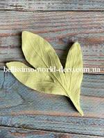 Молд лист Пиона реалистичный тройной мелкий, 9.5см х 7см