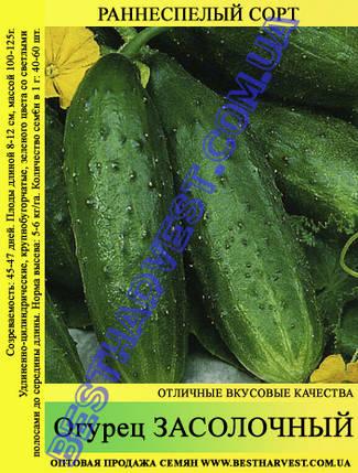 Семена огурца Засолочный 0,5кг, фото 2