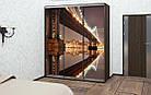 Шкаф купе Модерн 2400х450х2400 Алекса мебель, фото 3
