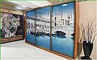 Шкаф купе Модерн 2400х450х2400 Алекса мебель, фото 9