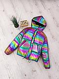 Куртки, фото 6