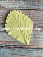 Молд лист Клубники (земляники) реалистичный, 6смх4,5см