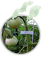 Клипсы для подвязки помидора