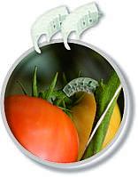 Клипсы для поддержки грон помидоров