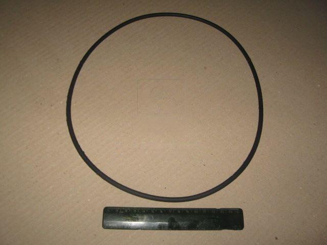 Кольцо (Беларусь). 265-275-58-2-2