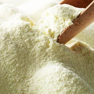Молоко сухое для рыбалки, заменитель (жирность 12%, протеин 22%) 1кг