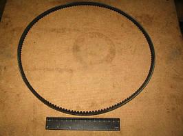 Ремень 10, 7х8х1030 зубчатый вентилятора ГАЗ (БРТ). 4022.1308020